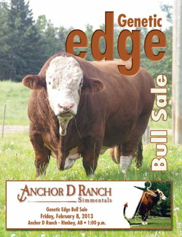 Bull Sale • February 8, 2013 • 1:00 pm - Bouchard Livestock ...