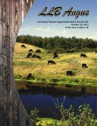 LLB Angus - Bouchard Livestock International