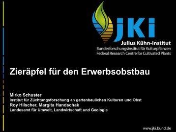 Selektierte Apfelklone - Landwirtschaft in Sachsen