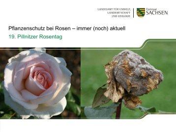Vorbeugende - Landwirtschaft in Sachsen
