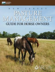 GUIDE FOR HORSE OWNERS - Lone Star Healthy Streams Program