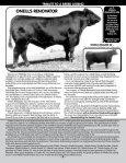 O'NEILL ANGUS FARM - Angus Journal - Page 5