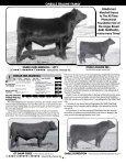 O'NEILL ANGUS FARM - Angus Journal - Page 6