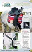 DAS WESTERNREITEN - Le monde du cheval - Seite 3