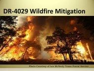 Hazard Mitigation Webinar Presentation (PDF) - Texas Department ...