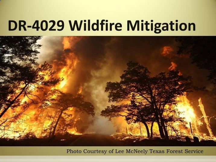 wildfire mitigation essay