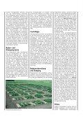 Kulturanleitung für Zitronenmelisse - Bayerische Landesanstalt für ... - Seite 2