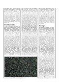 Kulturanleitung für Zitronenmelisse - Bayerische Landesanstalt für ... - Seite 4