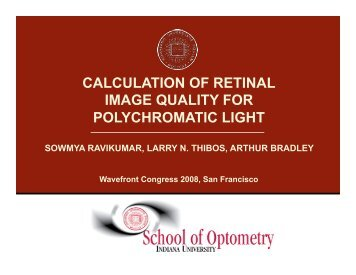 Download PDF - Visual Optics Institute