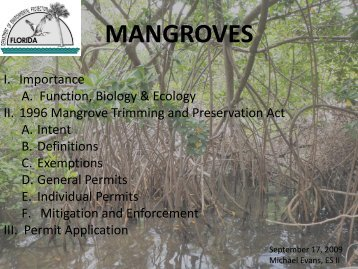 MANGROVES - Florida Department of Environmental Protection