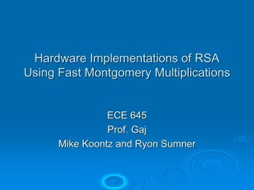 Hardware and Software Implementations of RSA Encryption Using ...