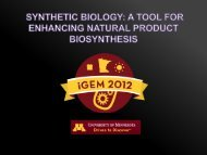 Minnesota Presentation - iGEM 2012