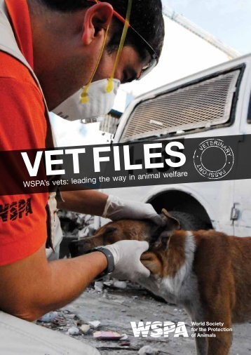 Vet Files - WSPA's Vets - Animal Mosaic