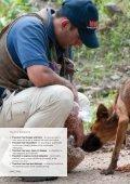 Vet Files - WSPA's Vets - Animal Mosaic - Page 2