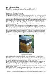 Detaillierte Arbeiten am Bienenvolk - Bienenzuchtverein Würselen