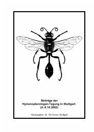 Beiträge der Hymenopterologen-Tagung in Stuttgart (4 ... - DGaaE