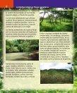 La biodiversidad en fincas ganaderas - Page 6