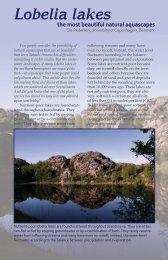 Lobelia lakes - CLEAR Lake-Restoration