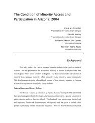 The Condition of Minority Access and Participation in Arizona: 2004