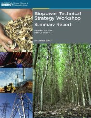 Biopower Technical Strategy Workshop Summary Report