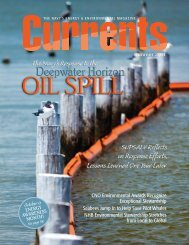 Entire Issue - US Department of the Navy Energy, Environment and ...