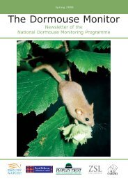 The Dormouse Monitor Spring 2006 - People's Trust for Endangered ...