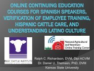 Online Continuing Education Courses for Spanish Speakers ...