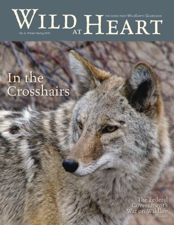 here - WildEarth Guardians