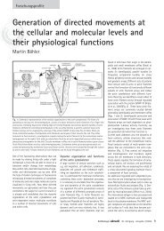 Generation of directed movements at the cellular and molecular ...
