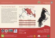 Faltblatt Spechfest mit Programm - Nationalpark Bayerischer Wald