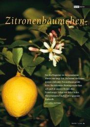 Zitronenbäumchen - Natürlich