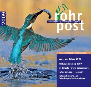 Rohrpost 2009, PDF - Aktion Drömlingschutz eV