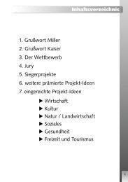 Broschüre Ideenwettbewerb (550 KB) - Regionalentwicklung ...