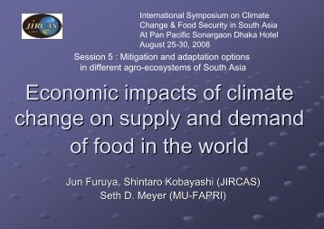 Economic impacts of climate change on supply and demand of food ...