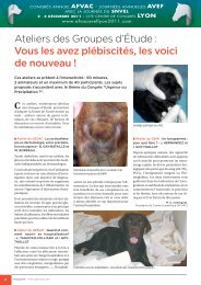 6-11_ACTU JUIL-AOUT11-V3.indd - afvac avef lyon 2011