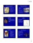 Edith Hamilton's Mythology - Page 4