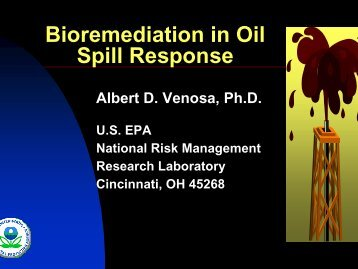 Bioremediation in Oil Spill Response