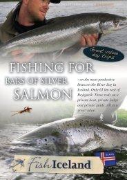 SALMON - FishIceland.is