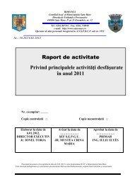 Raport de activitate anul 2011 DEP a Municipiului - Primăria Satu ...