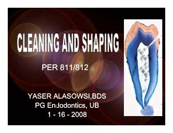 Cleaning & Shaping 2008.pdf