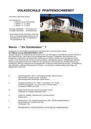 VOLKSSCHULE PFAFFENSCHWENDT - Fieberbrunn