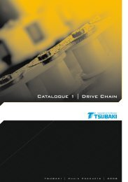 Catalogue 1 | Drive Chain - Tsubaki Europe