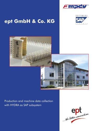 SAP: HYDRA Project Report ept - MPDV USA