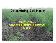 Determining Soil Health