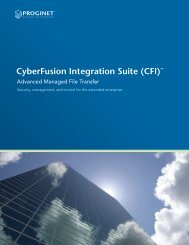 CyberFusion Integration Suite (CFI)™ - Envision Software GmbH