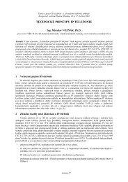 240 kB - Teorie a praxe IP telefonie