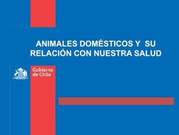 Rabia y riesgos de la población canina - SEREMI de Salud Región ...