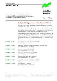 Planlagte offentliggørelser i Nyt fra Danmarks Statistik
