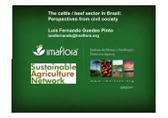 The cattle / beef sector in Brazil - Global Agenda of Action for ...