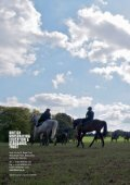 annual review - The British Horseracing Education & Standards Trust - Page 6